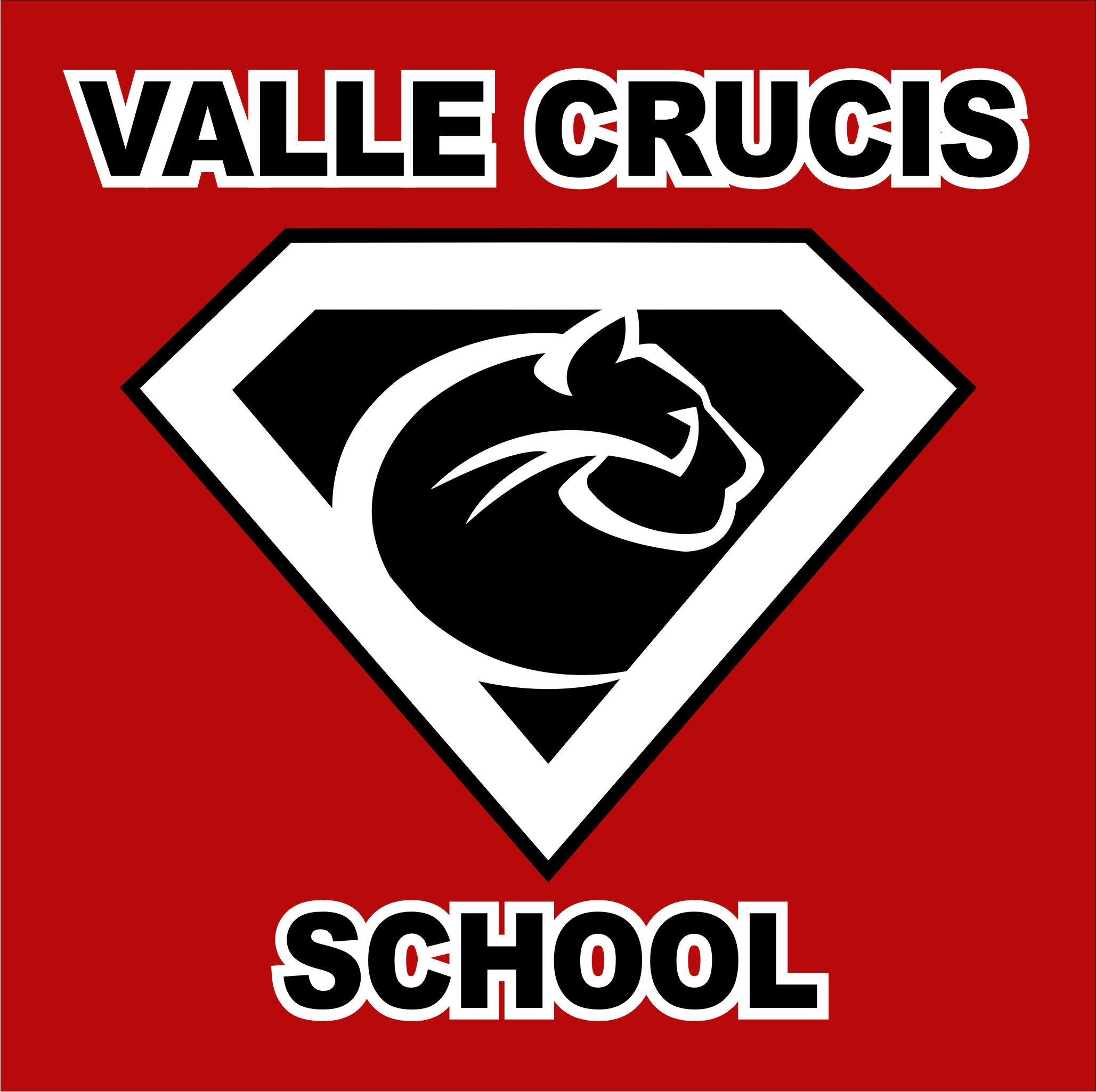 Image result for valle crucis school